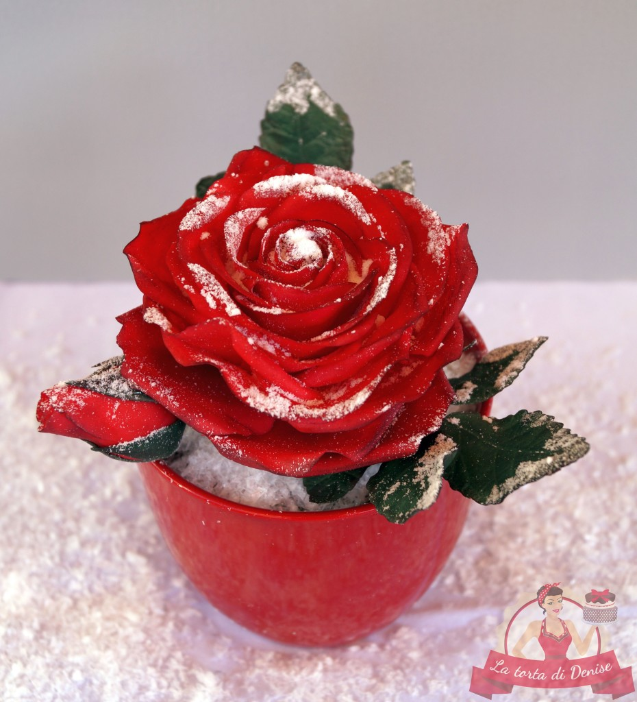 "Kurs ""Winter-Rose"""