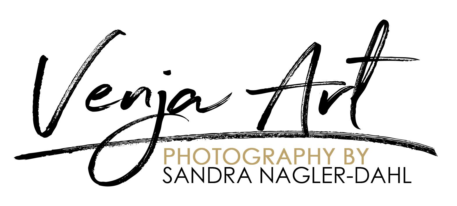 Logo Venja Art